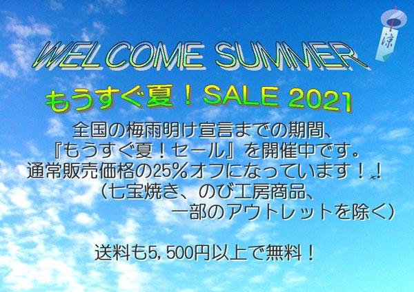 wellcome_summer_sale_2021-AG_a.jpg